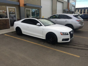 GORGEOUS, barely used 2008 Audi S5 Sport package Coupe (2 door)