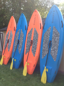 CHEAP Stand up paddle board rental