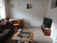 3 bed family home at Preston Circus