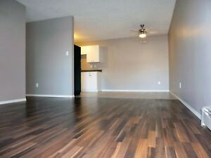 2month free rent on newly renovated home call 3064910407
