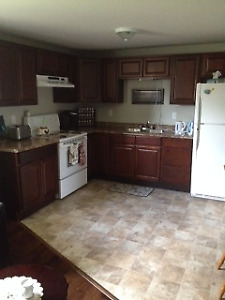 Bright 1 bdrm basement apartment in Goulds (Close to Ruby Line)