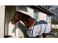 Horse Fleece 185cm / 6'