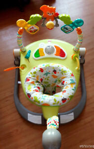 Fisher Price Jumperoo/Pet and smoke free home.