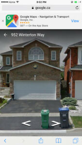 immediate rare 3 bedroom one and half washroom basement appart