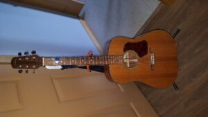 Walden 6 string acoustic guitar