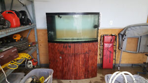 55/60 gallon bowfront aquarium and stand