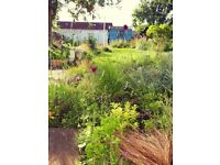 Edinburgh Gardening & Design