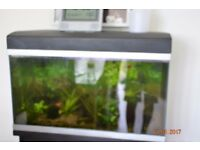 115ltr Fish Tank For Sale