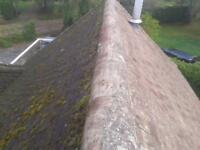 Roof and gutter cleaning services