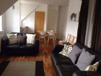 Twin Room available in SEPTEMBER in Grassmarket, Edinburgh (11/7)