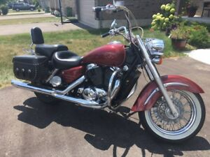 1998 Honda Shadow 1100 cc mint $3500 obo