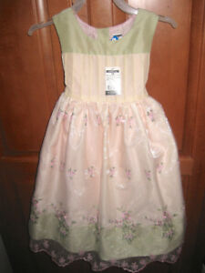 Beautiful Dress Size 18 months
