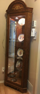 Curio cabinet with light-excellent condition