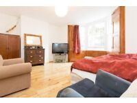 A charming two bedroom garden flat on Albion Road, very close to Clissold Park N16