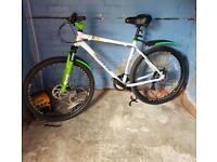 Mens 24 speed mountain bike