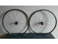 Mavic Open Pro Road Bike Wheels (Wheelset) Campagnolo freehub