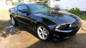 2010 Mustang GT Beautiful Car