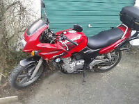 Honda CB500SX Very reliable, MOT til Sept '17. Used regularly,good runner, ideal commuter bike.
