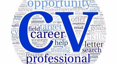 Professional cv writing service london