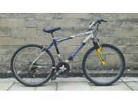 Rhino Mountain Bike