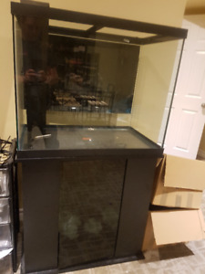 55 Gal Aquarium, stand, and tons of extras