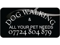 Dog Walking & All Your Pets Needs