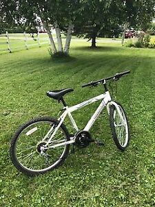 Vélo - cadre 16 pouces - 18 vitesses