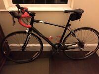 Womens Specialized Dolce Elite EQ Road Bike 57cm Frame