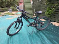 Childs Trek Mountain Bike
