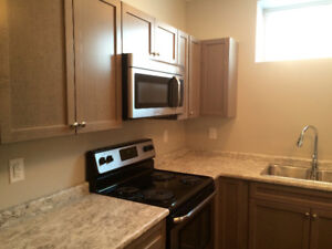 1/2 RENT 1ST MONTH! Beautiful 1 BR Legal suite rent in Evergreen