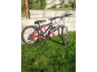 mountain bike cross track