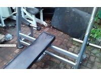 Flat commercial olympic bench press - Like Jordan high quality good condition!