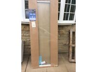 Plain glass pivot shower door.Brand new.