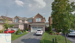 3 bedroom double garage beautiful house close to wilcox lake