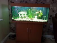 JUWEL Rio 180 Aquarium with cabinet - excellent condition