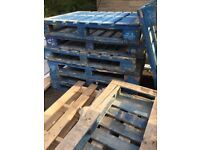 Wooden Pallets, Heavy Duty Blue pallets and unpainted wooden pallets
