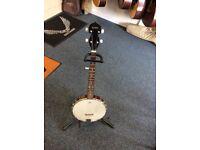 maestro open back 5 string banjo