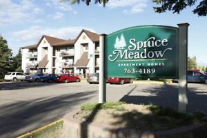 Move In Today! In-suite Laundry. Call 306-314-0214