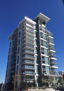 BRAND NEW 1 BEDROOM APARTMENT, available now, Sept 15 or Oct 1st