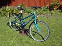 1 mountain Bicycle for sale. Very good value for the price. 15 Shimano gears Needs some TLC