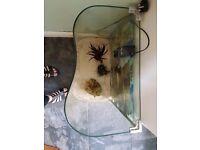 B shaped fish tank