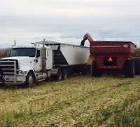 Class one driver trucker for fall