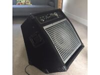 SWR Working Pro 200 Bass Amplifier