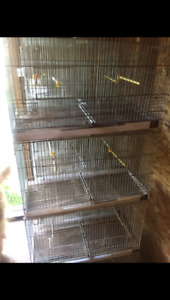 Cages for bird