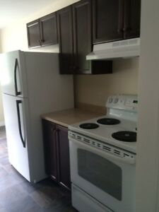 930+Sqft ADULT - 2 Bedroom Northside - New Renovations :)