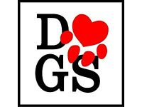 Experienced dog foster carer- Walker/Sitter/Boarding Services