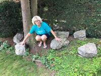 FREE 7 Very Large Rockery Stones