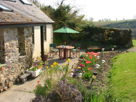 Sunny Rural Studio Room to Rent- Bovey Tracey