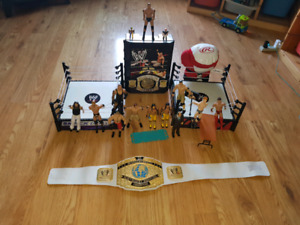 WWE Wrestling Action Figures and More!