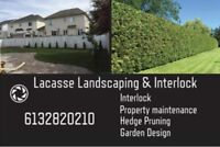 Landscaping competitive pricing